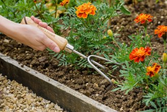 3 Prong Cultivator Stainless Steel