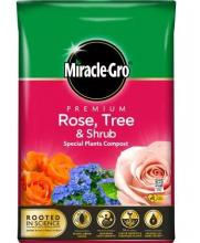 ROSE,TREE,SHRUB